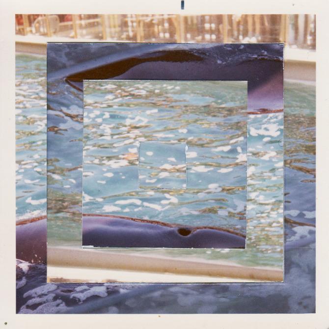 Dolphin_0001